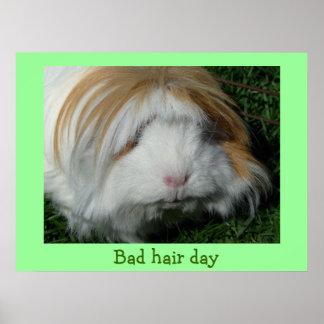 conejillo de Indias, mún día del pelo Posters