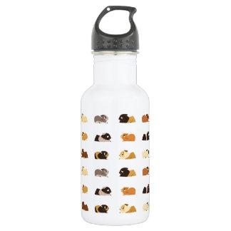 Conejillos de Indias Botella De Agua De Acero Inoxidable