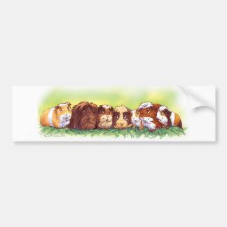 Conejillos de Indias Pegatina De Parachoque