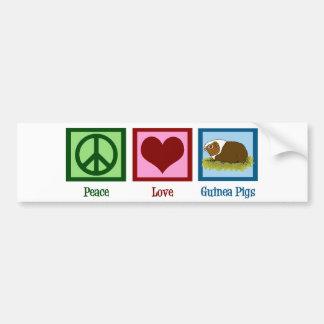 Conejillos de Indias del amor de la paz Pegatina De Parachoque