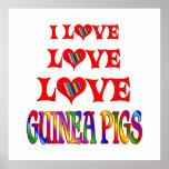 Conejillos de Indias del amor del amor Poster