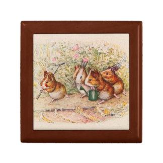 Conejillos de Indias que plantan en el jardín Caja De Joyas