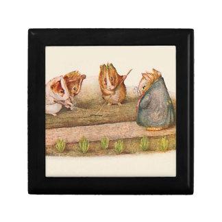 Conejillos de Indias que tienden el jardín Cajas De Recuerdo