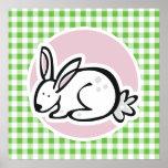 Conejito blanco; Guinga verde Poster