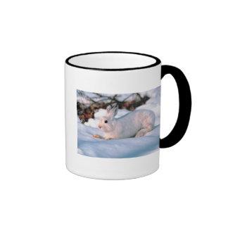 Conejito blanco taza de café