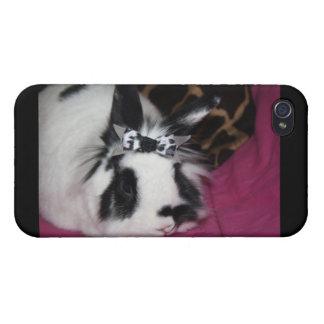 Conejito con la caja de la mota de IPhone del arco iPhone 4 Fundas
