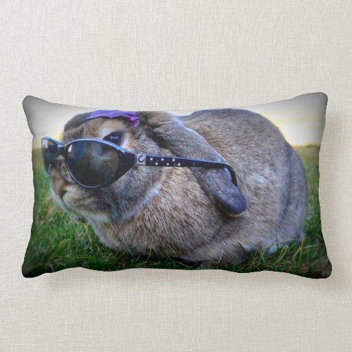 Conejito con las gafas de sol/las almohadas de MoJ