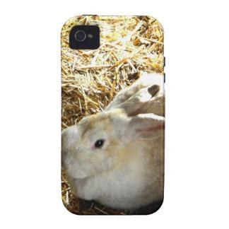 Conejito de la paja iPhone 4/4S carcasa