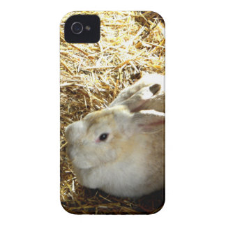Conejito de la paja iPhone 4 Case-Mate cárcasa