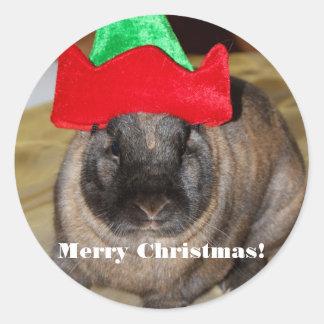 Conejito de las Felices Navidad con el regalo del Pegatina Redonda