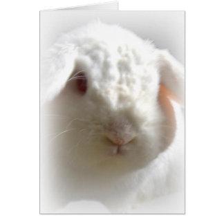 Conejito de pascua de orejas ca3idas del albino tarjeta de felicitación