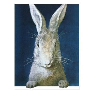 Conejito de pascua del vintage, conejo blanco pelu postal