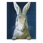 Conejito de pascua del vintage, conejo blanco postal