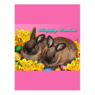 Conejito de pascua huevos de Pascua y Pascua Lill Postal