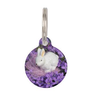 Conejito de pascua rodeado por las flores púrpuras placa para mascotas