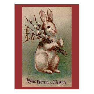 Conejito de pascua tarjetas postales