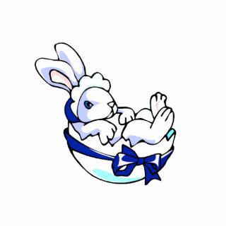 conejito del bebé en el huevo ribbon.png azul escultura fotografica