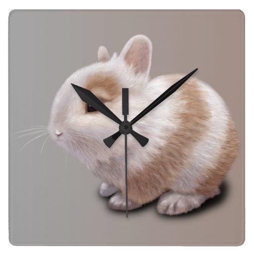 Conejito del bebé reloj