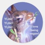 Conejito del vegano pegatina redonda