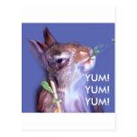 Conejito del vegano postal