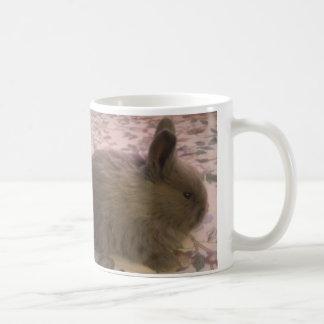 Conejito del zorro plateado de la lila del bebé tazas de café