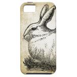 Conejito elegante lamentable del conejo blanco iPhone 5 Case-Mate coberturas