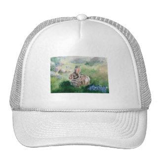 Conejito en el gorra del prado