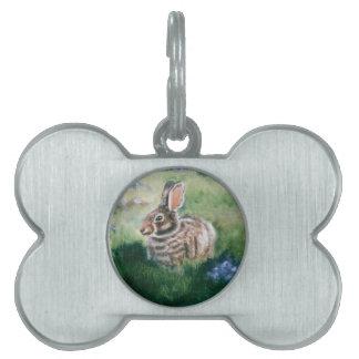 Conejito en la etiqueta del mascota del prado placa de mascota