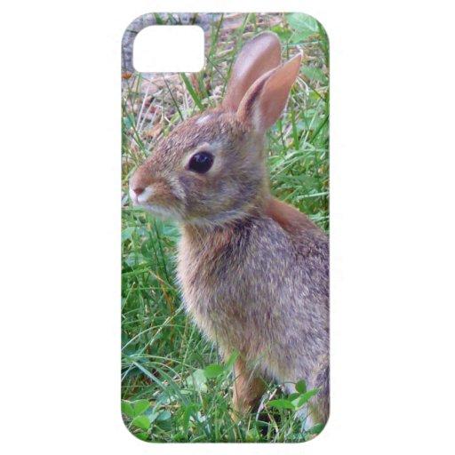 Conejito lindo del conejo de conejo de rabo blanco iPhone 5 Case-Mate cárcasa