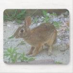 Conejito lindo tapete de ratones