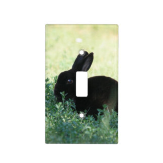Conejito negro de Lil Tapa Para Interruptor
