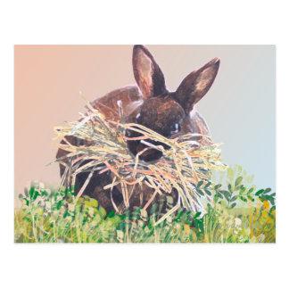 Conejito o jerarquía de pascua que hace el conejo  postal