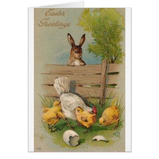 Conejito y polluelo lindos de la tarjeta de felici