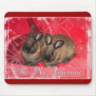 Conejitos de la tarjeta del día de San Valentín S Tapetes De Ratón
