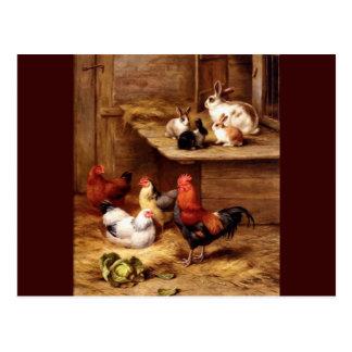 Conejitos de los animales del campo de las tarjetas postales
