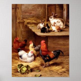 Conejitos de los animales del campo de los mascota póster