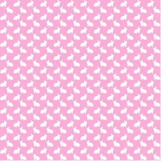 Conejitos de pascua blancos en rosa adorno fotoescultura