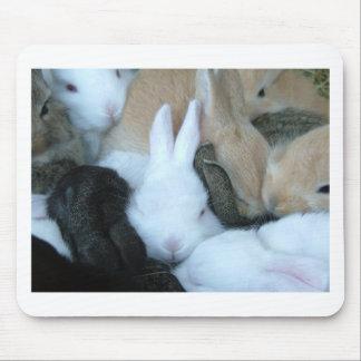 Conejitos del cojín de ratón de los conejos de con tapetes de raton