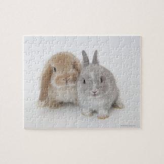 Conejitos del enano y de Holanda Lop de dos Nether Rompecabeza Con Fotos