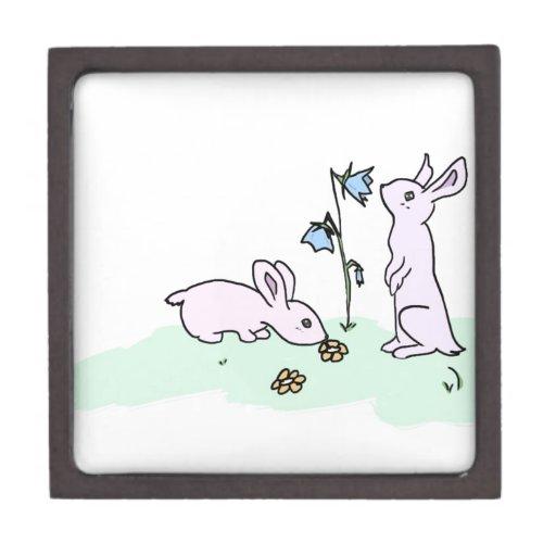 Conejitos juguetones caja de regalo de calidad