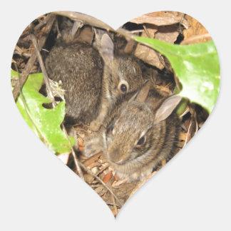 Conejitos salvajes del bebé pegatina en forma de corazón