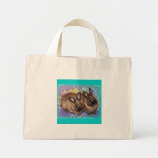 Conejitos soñadores en la tierra de la fantasía co bolsas