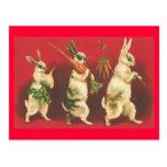 Conejitos y postal de las zanahorias