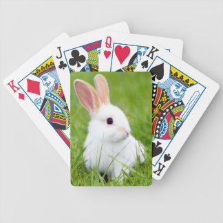 Conejo blanco baraja cartas de poker