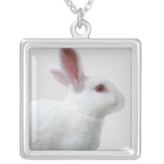 Conejo blanco colgante cuadrado