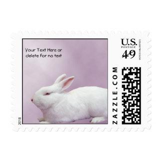 Conejo blanco en fondo de la lila