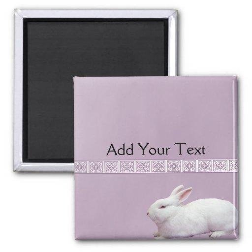 Conejo blanco en fondo de la lila imán cuadrado
