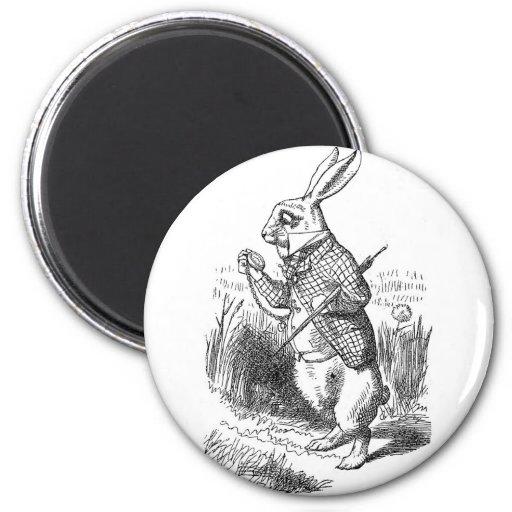 Conejo blanco imán redondo 5 cm