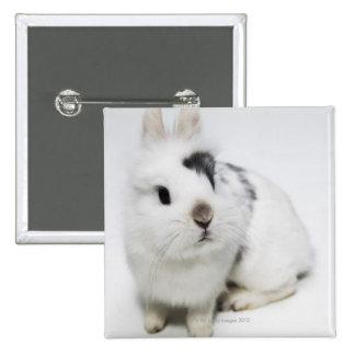 Conejo blanco, negro y marrón pins