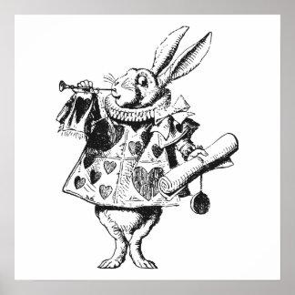 Conejo blanco poster